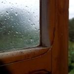 umide e scricchiolanti finestre