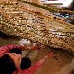 torchis su intreccio in bambù